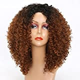 MISSWIG Synthetic Wigs Ombre Color Heat Resistant Kinky Curly Ldies Wigs Relisticl Looking Full Wigs for Women with Wig Cap
