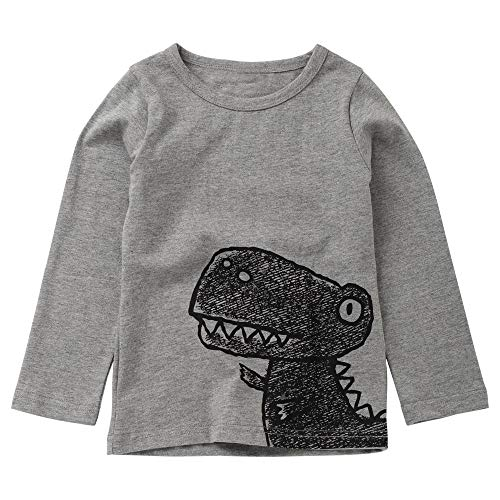 Amazon.com: Tronet Autumn Kids Tops, Winter Baby Boys Letter Dinosaur Print Long Sleeve T-Shirt Tops: Clothing