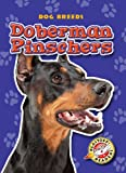 Doberman Pinschers, Sara Green, 1600144594