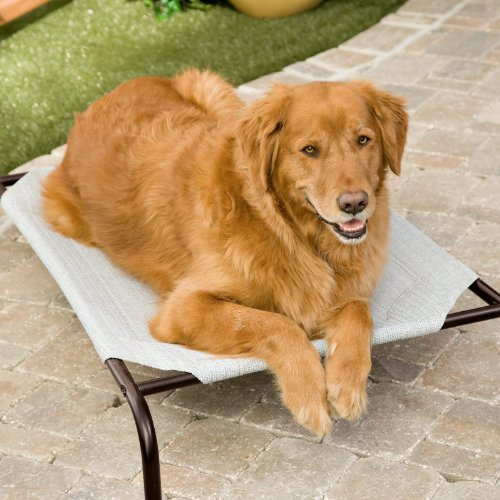 Coolaroo Deluxe Dog Bed – Grey Size – Large – 51L x 32W x 8H in., My Pet Supplies