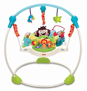 Fisher-Price Precious Planet Blue Sky Jumperoo (Discontinued by Manufacturer)