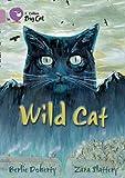 Wild Cat: Band 18/Pearl (Collins Big Cat)