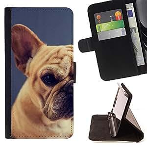 "Bright-Giant (Raza Pug Puppy Dog Pet Boston Terrier"") Modelo Colorido Cuero Carpeta Tirón Caso Cubierta Piel Holster Funda Protección Para Apple (5.5 inches!!!) iPhone 6+ Plus / 6S+ Plus"
