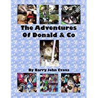 The Adventures Of Donald & Co