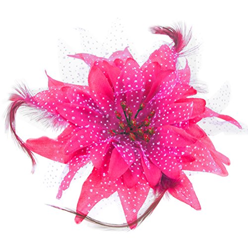 BAOBAO Women Wedding Party Mesh Flower Feather Hair Clip Fascinator Hairband Headband, Rose