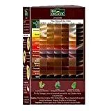 Indus Valley Chocolate Henna Hair Color-100% Pure & Natural