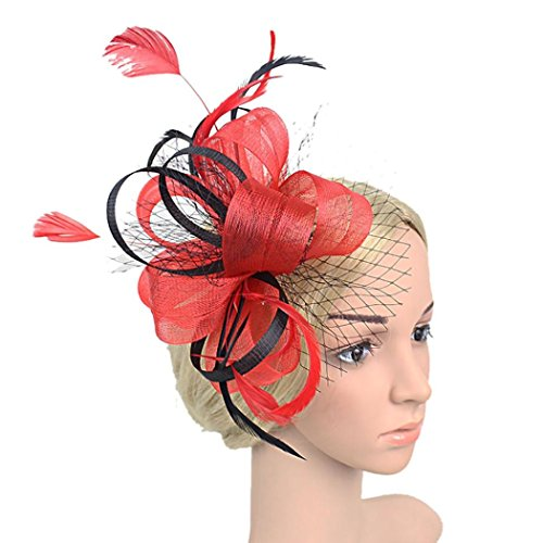 Rouge Yarn - Cywulin Women's Fascinator Hats Mesh Ribbons Floral Feather Wedding Hat Cocktail Tea Party Headwear with Headband (P)