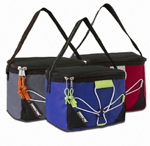Lunch Bag / Fridge Pak Can Cooler (Grey) Special Sale Price