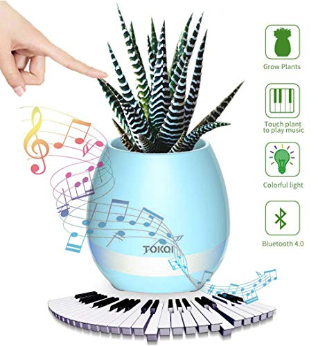 TOKQI Wireless Speakers Touch Control Night Light Breathing LED Musical Flowerpot Smart Plant Pots Play Music by Touching Plants Rechargeable Home Decor Festivel Gift (Blue)