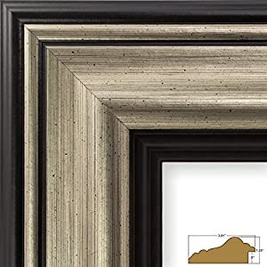 Amazon.com - Craig Frames 21307202 16 by 20-Inch Picture ...