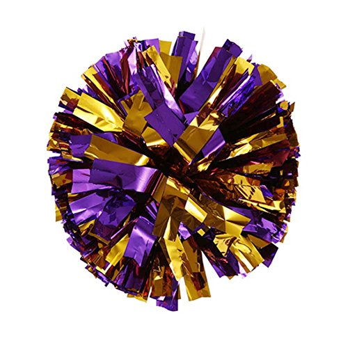1 Pair Cheerleading Pom Poms Party Costume Accessory