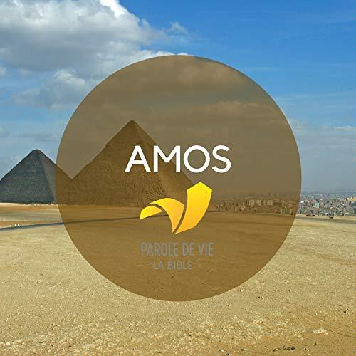 (Chapitre 8 : Quatrième vision d'Amos : le panier de)