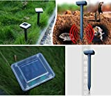 Solar Powered Garden Sonic Waves Mole Repeller Pest Control for Mouse/Rat/Mice(Pack of 2)