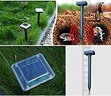 Best Pest Controls - Solar Powered Garden Sonic Waves Mole Repeller Pest Review