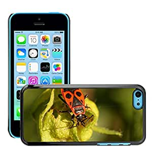 Super Stella Slim PC Hard Case Cover Skin Armor Shell Protection // M00144447 Beetle Bug Fire Bug Insect // Apple iPhone 5C