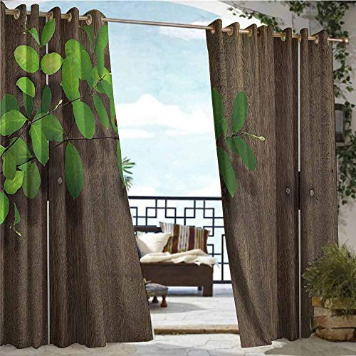 Outdoor Privacy Curtain for Pergola Ladybugs Decorations Collection,Ladybug on Leaf Wood Background Wooden Panel Timber Hardwood Fence Home Print,Brown Green,W84
