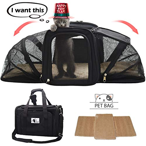 CACA Soft-Sided Pet Carrier, Pet Handbag Portable Airline Approved, Two Sideds Expansion Pet Case with Washable Bedding, Collapsible Pet Travel Carrier on Trolley Case for Small ()