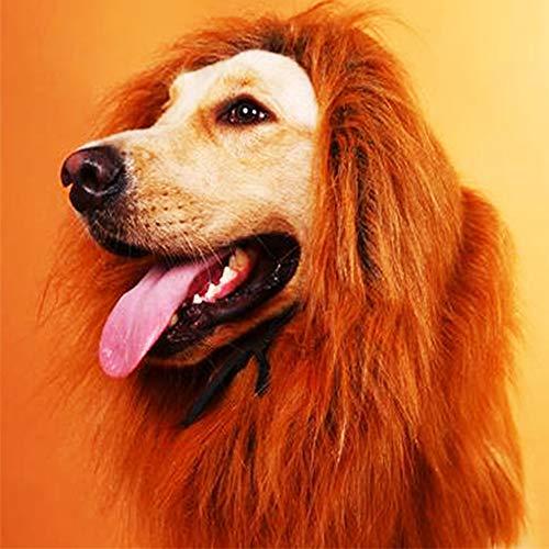 (QLINLEAF Dog Lion Mane Wig Costume for Medium to Large Sized Dogs Adjustable Halloween Fancy Funny ManeDeep)