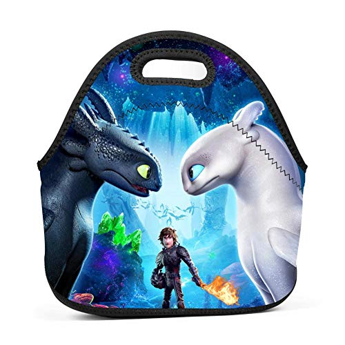 How to Train Your D-ragon 3 Waterproof Lunch Bags Insulated Tote Bags Adult Kids Lunch Boxes for School Work Office Camping Travel