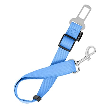 AllPetSoutions AllpetSolutions - Cinturón de Seguridad para Perro ...
