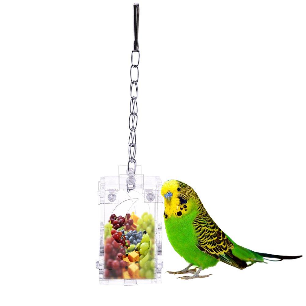Clear Acrylique Mangeoire /à oiseaux Parrots Syst/ème interactif jouet suspendu style pour perroquet Aras Pet