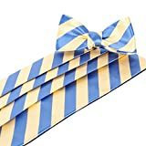 Makers Yellow Blue Cummerbund & Bow Tie Set