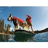 Ruffwear K-9 Float Life Jacket for Dogs, My Pet Supplies