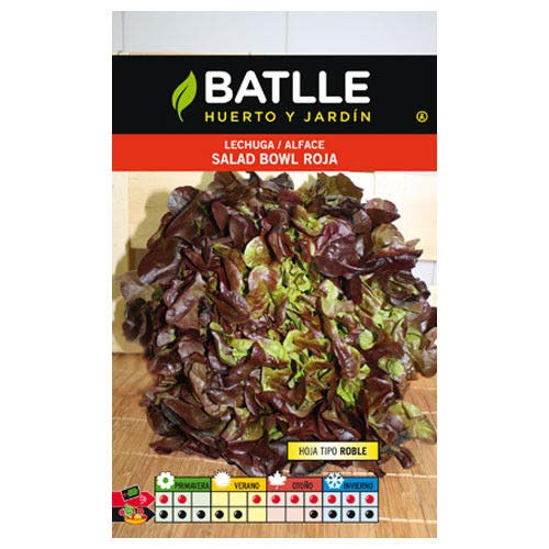 Batlle Vegetable Seeds - Lettuce Salad Bowl Rossa (5g) (Rossa Seeds)