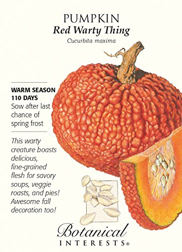 Red Warty Thing Pumpkin Seeds - 2