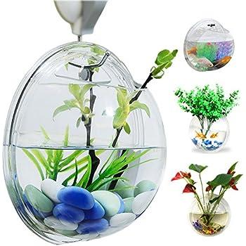 Amazon.com : Fish Bubble - Wall Mounted Acrylic Fish Bowl : Wall ...