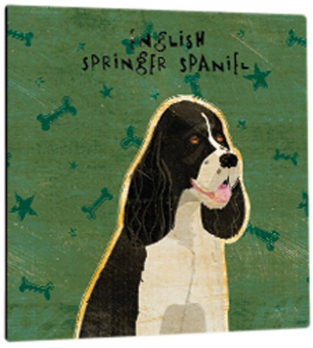 Tree-Free Greetings 60997 Premium Square Eco Magnet, 3.5-Inch, Black and White English Springer Spaniel