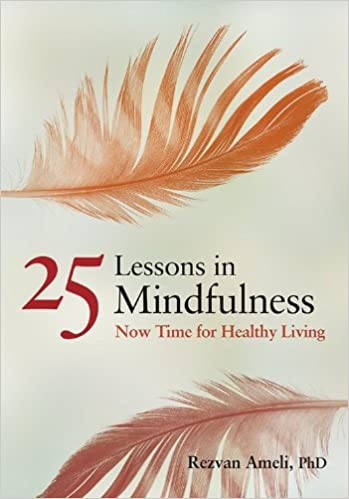 25 Lessons in Mindfulness Now Time for Healthy Living APA Life