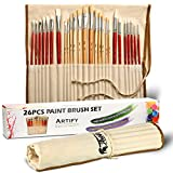 Artify 26 Pcs Paint Brushes Art Set for Acrylic Oil Watercolor and Gouache Painting| a Kit of High Quality Hog Pony and Nylon Hairs| Including Two Large Size Nylon Brushes and a Carrying Pouch