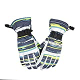 Ynport Mens Windproof Snowboarding Non-slip Colorful Ski Gloves