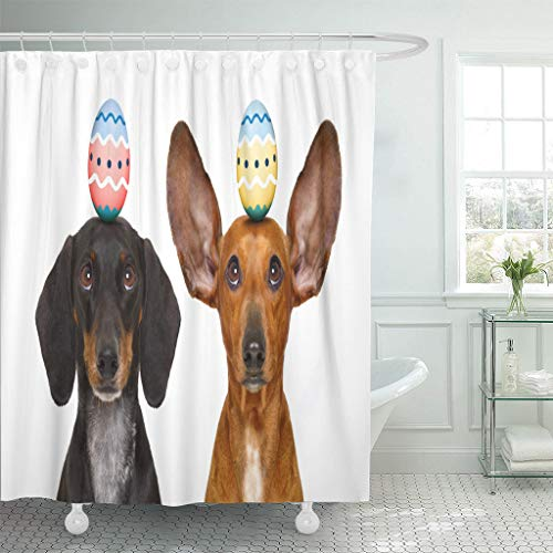 Ladble Waterproof Shower Curtain Curtains Colorful Pet Funny Dachshund Sausage Dogs Easter Bunny Egg on Head Looking Up Two 72