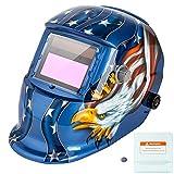 Z ZTDM Welding Helmet Mask Solar Auto Darkening,Adjustable Shade Range DIN 9-13/Rest DIN 4,Welder Protective Gear ARC MIG TIG,2pcs Extra Lens+CR2032 Battery (Blue Eagle)