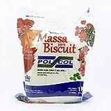 Massa de Biscuit Polycol 1Kg