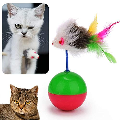 Amazon.com : Best Quality 2018 Durable pet cat Toys Mimi Favorite Fur Mouse Tumbler Kitten cat Toys Plastic Play Balls for Catch Cats Supplies : Pet ...