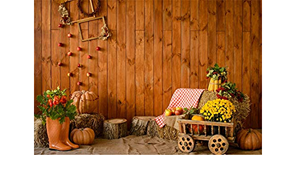 OFILA Thanksgiving Day Party Backdrop 10x8ft Autumn Festival Photos Background Bokeh Backdrop Pumpkins Rustic Wood Photos Kids Fall Photo Shoot Harvest Season Background Props