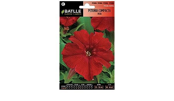 Semillas de Flores - Petunia Compacta rojo fuego - Batlle: Amazon.es: Jardín