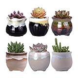 WITUSE small planters cactus planter father's day succulent pots, small cactus pot small succulent pots, glazed ceramic plants pot - 6pcs