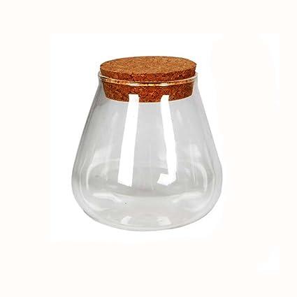Botella de vidrio que deseen botella de bricolaje de aproximadamente 2-3 pulgadas con tapones