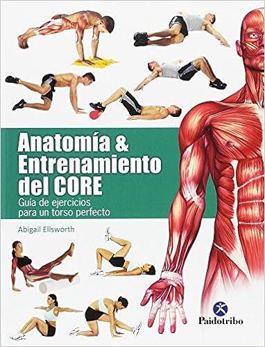 Anatomía & Entrenamiento Del Core (Deportes): Amazon.es: Abigail ...