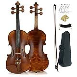 Aliyes Premium Violin 4/4 Full Size Solid Wood Violin For Beginner Violinist/Professional Student Violin Kit String,Shoulder Rest,Rosin,Bridge(YWA-2)
