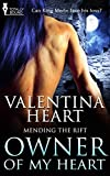Owner of my Heart (Mending the Rift Book 2)