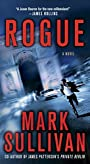 Rogue: A Novel (Robin Monarch series Book 1)