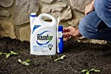 Roundup Weed and Grass Killer III Ready-to-Use