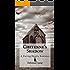 Cheyenne's Shadow (The Daring Hearts Series Book 3)
