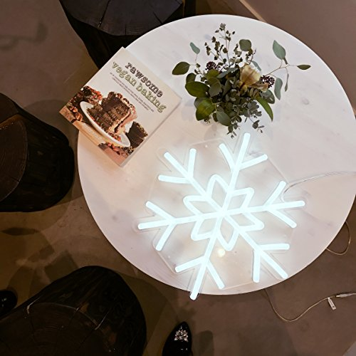 DragonX LED Neon Sign Light-Home and Party Decorations-12 Volts PVC Tube Acrylic Wall Art-Big Snowflake by DragonX (Image #2)