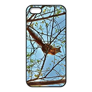 Naughty Squirrel Hight Quality Plastic Case for Iphone 5s